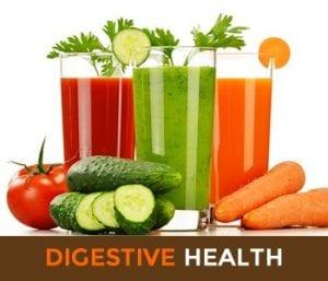 Digective Health | Gut Healt