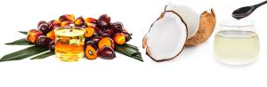 palmoil-coconutoil